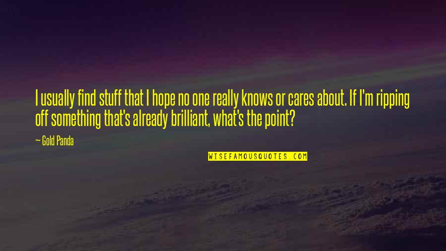 The What If Quotes By Gold Panda: I usually find stuff that I hope no