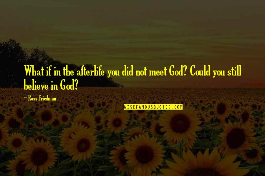 The What If Quotes By Ross Friedman: What if in the afterlife you did not