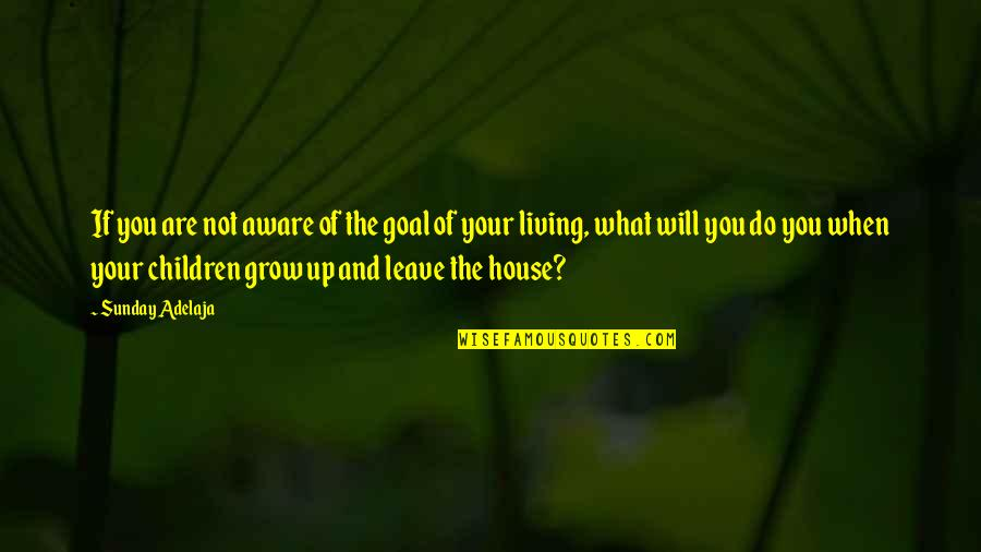 The What If Quotes By Sunday Adelaja: If you are not aware of the goal