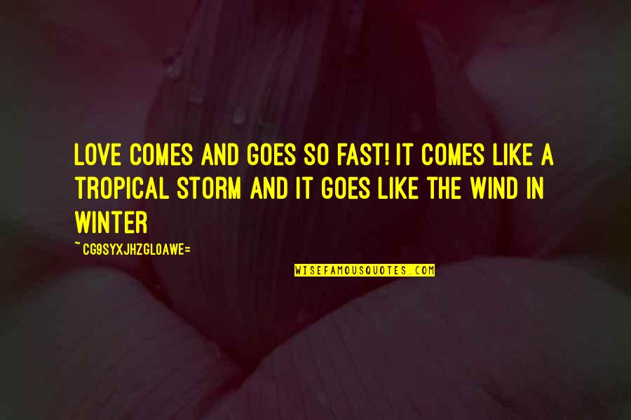 The Wind And Life Quotes By CG9sYXJhZGl0aWE=: Love comes and goes so fast! It comes