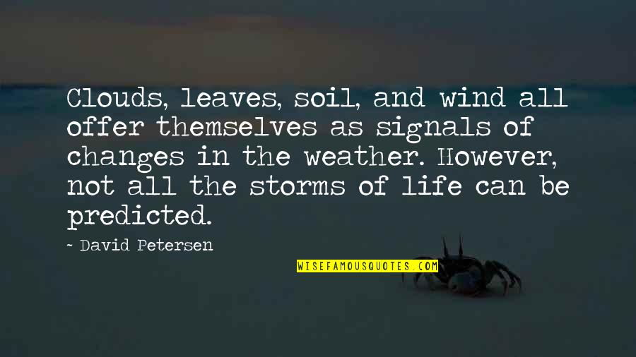 The Wind And Life Quotes By David Petersen: Clouds, leaves, soil, and wind all offer themselves