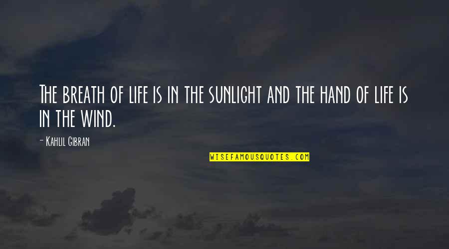 The Wind And Life Quotes By Kahlil Gibran: The breath of life is in the sunlight