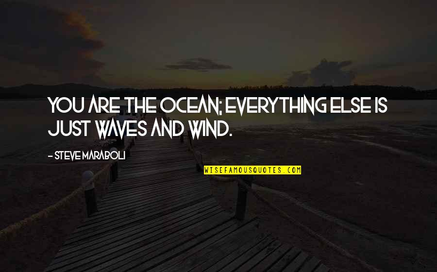 The Wind And Life Quotes By Steve Maraboli: You are the ocean; everything else is just