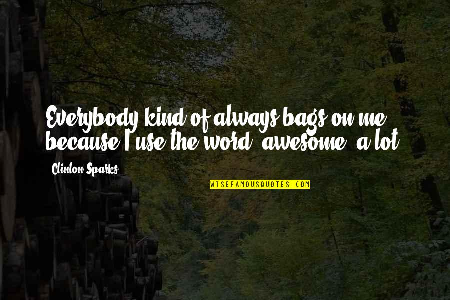 The Word Awesome Quotes By Clinton Sparks: Everybody kind of always bags on me because