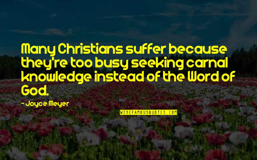 The Word Of God Quotes By Joyce Meyer: Many Christians suffer because they're too busy seeking