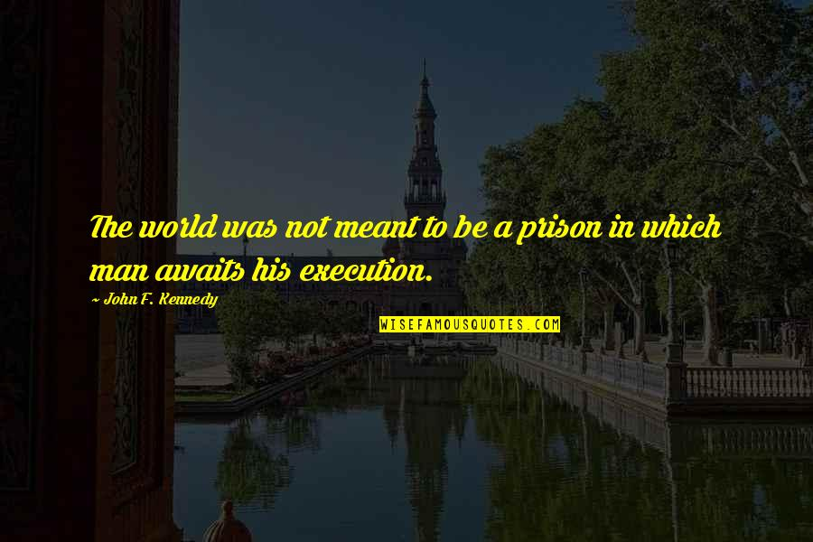 The World Awaits Quotes By John F. Kennedy: The world was not meant to be a
