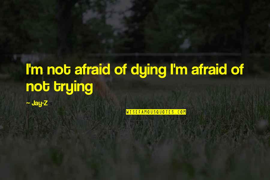 The Young Dying Quotes By Jay-Z: I'm not afraid of dying I'm afraid of