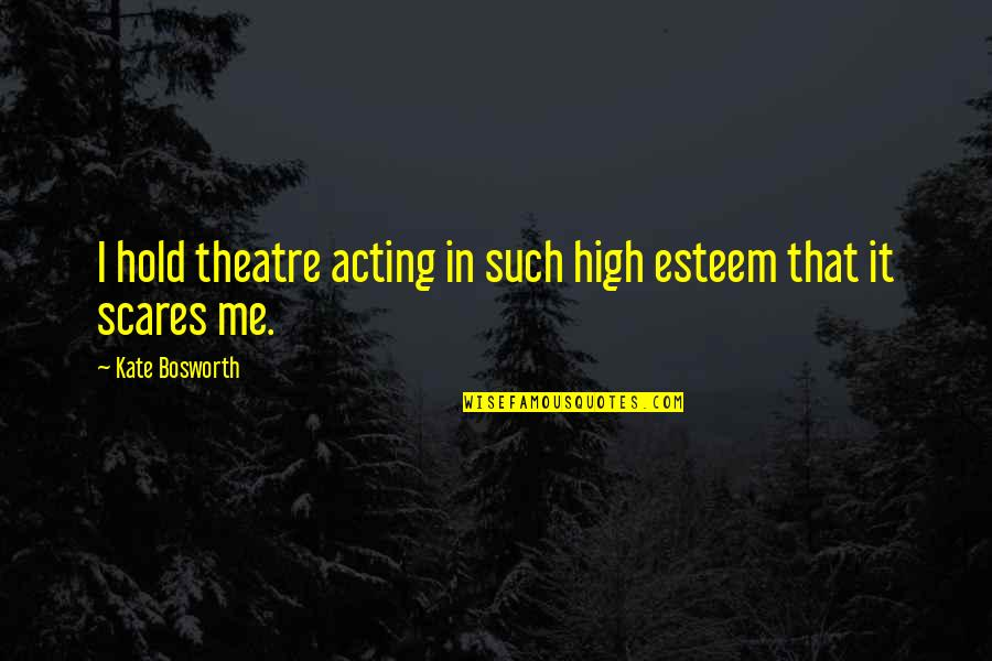 Theatre And Acting Quotes By Kate Bosworth: I hold theatre acting in such high esteem