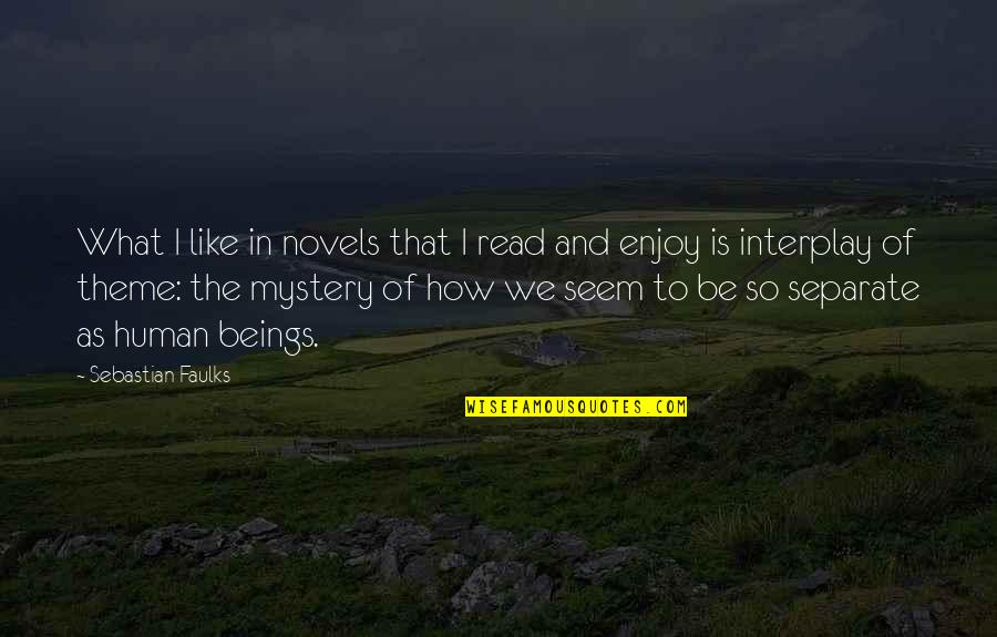 Theme Quotes By Sebastian Faulks: What I like in novels that I read