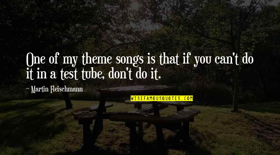 Theme Songs Quotes By Martin Fleischmann: One of my theme songs is that if