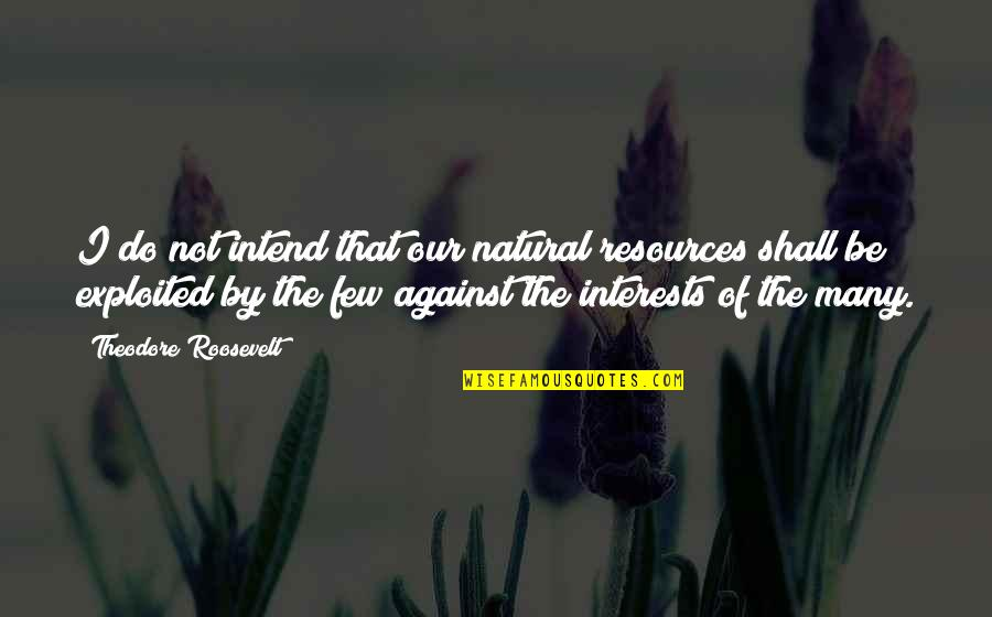 Theodore Roosevelt Natural Resources Quotes By Theodore Roosevelt: I do not intend that our natural resources