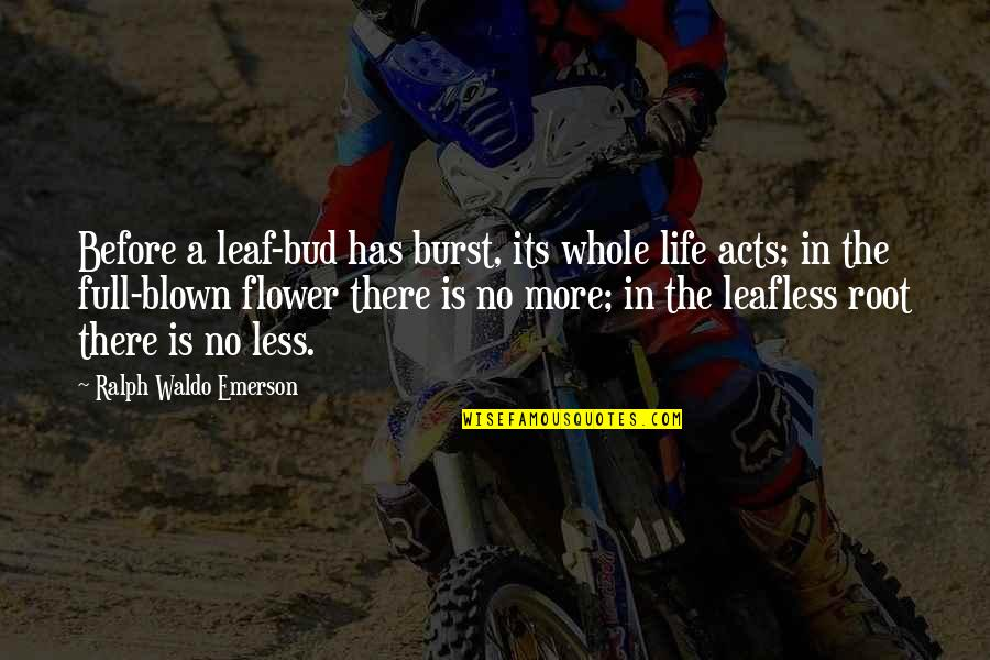 Theodore Rubin Quotes By Ralph Waldo Emerson: Before a leaf-bud has burst, its whole life