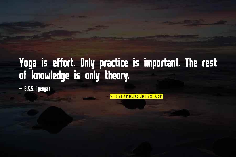 Theory's Quotes By B.K.S. Iyengar: Yoga is effort. Only practice is important. The