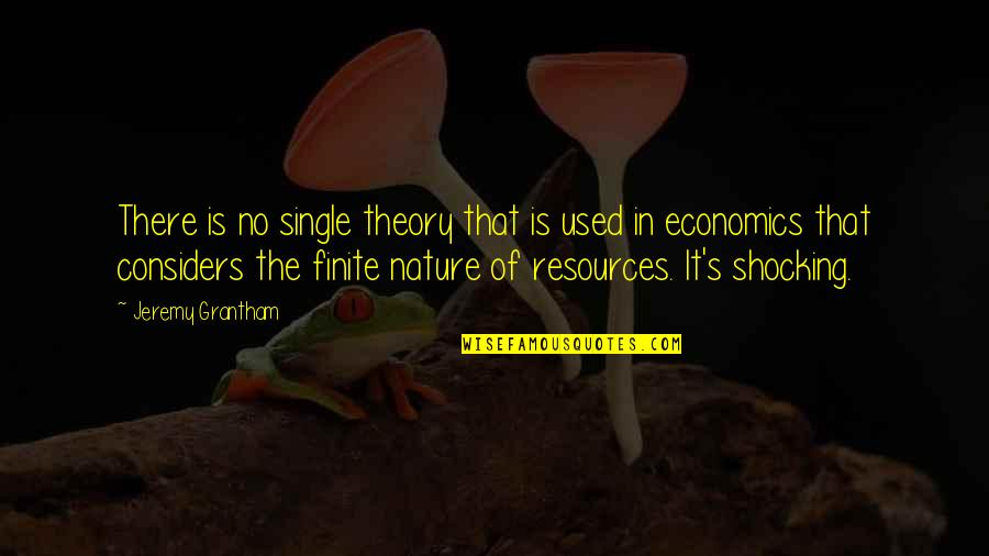 Theory's Quotes By Jeremy Grantham: There is no single theory that is used