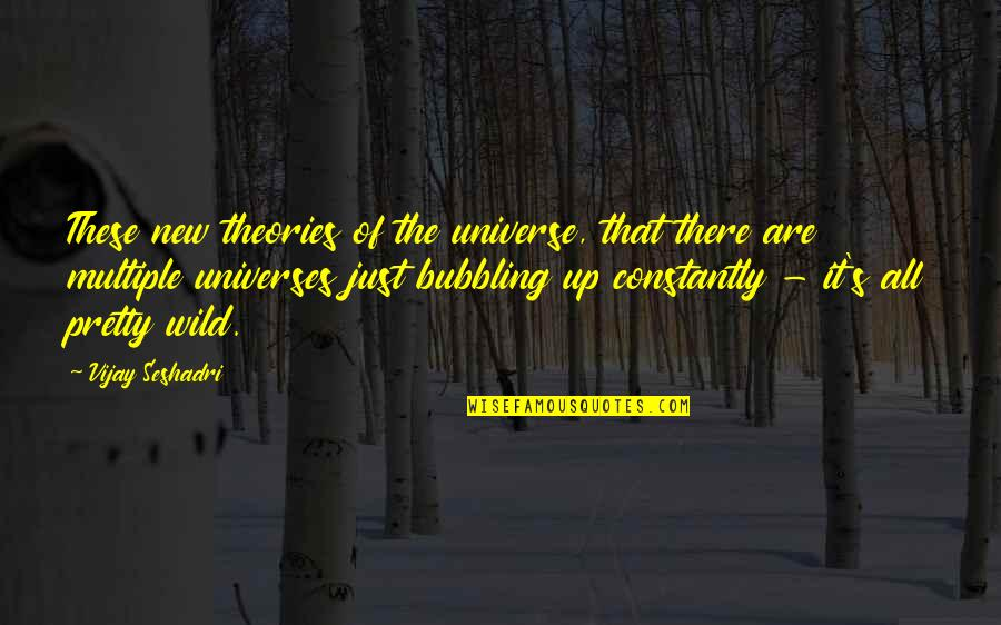 Theory's Quotes By Vijay Seshadri: These new theories of the universe, that there