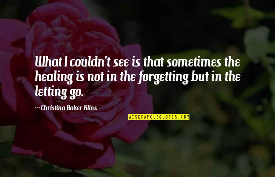 Thepla Quotes By Christina Baker Kline: What I couldn't see is that sometimes the