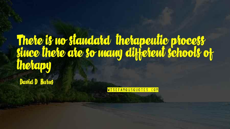 Therapeutic Quotes By David D. Burns: There is no standard 'therapeutic process,' since there