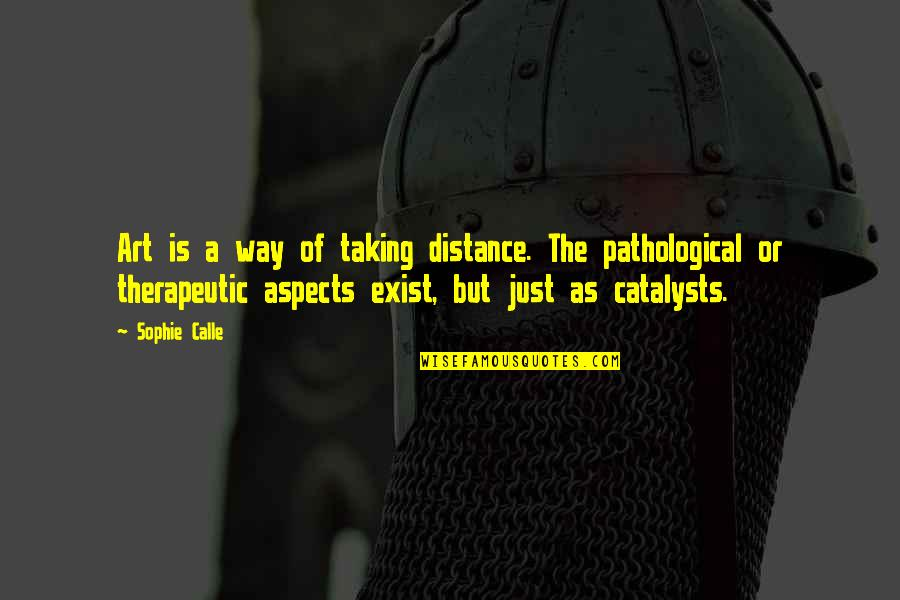 Therapeutic Quotes By Sophie Calle: Art is a way of taking distance. The