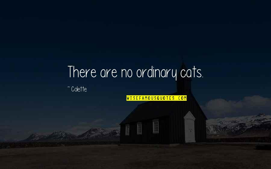 There Are Quotes By Colette: There are no ordinary cats.