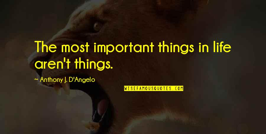 There More Important Things Life Quotes By Anthony J. D'Angelo: The most important things in life aren't things.
