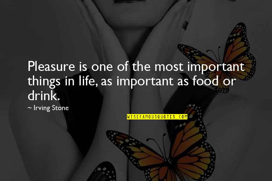 There More Important Things Life Quotes By Irving Stone: Pleasure is one of the most important things