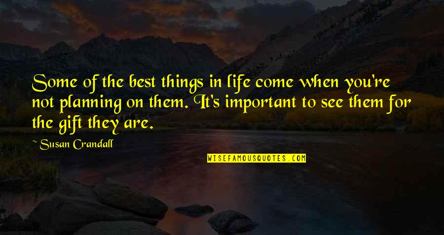 There More Important Things Life Quotes By Susan Crandall: Some of the best things in life come