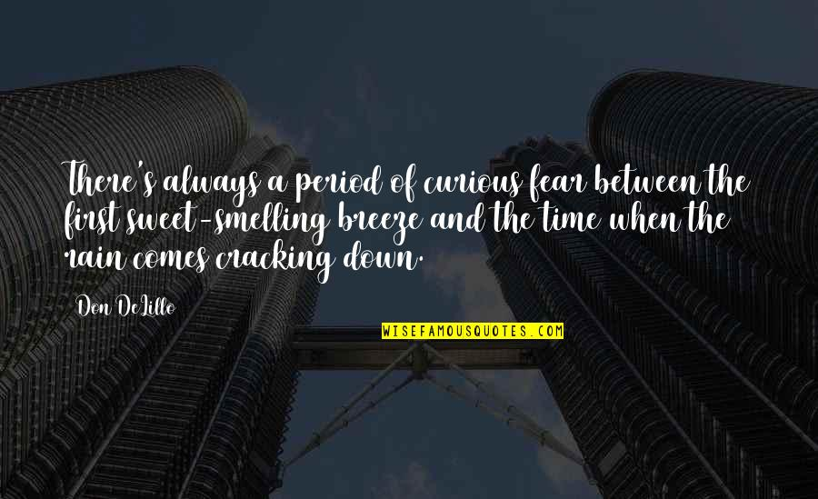 There's Always A First Time Quotes By Don DeLillo: There's always a period of curious fear between