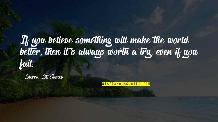 There's Always Something Better Quotes By Sierra St. James: If you believe something will make the world