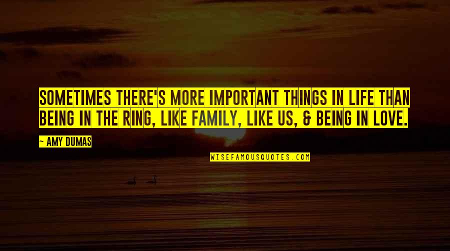 There's More Important Things In Life Quotes By Amy Dumas: Sometimes there's more important things in life than