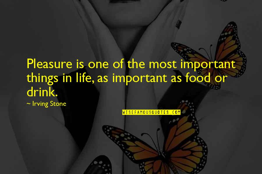 There's More Important Things In Life Quotes By Irving Stone: Pleasure is one of the most important things