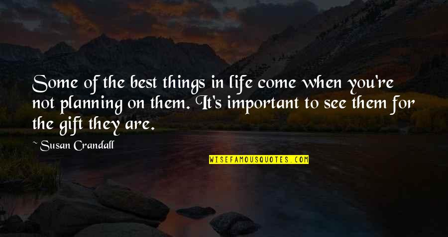 There's More Important Things In Life Quotes By Susan Crandall: Some of the best things in life come