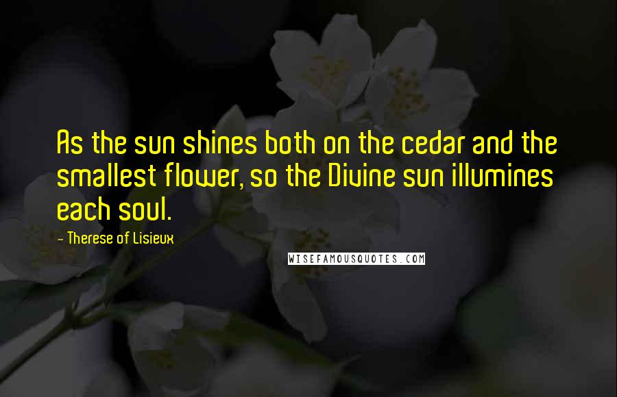 Therese Of Lisieux quotes: As the sun shines both on the cedar and the smallest flower, so the Divine sun illumines each soul.