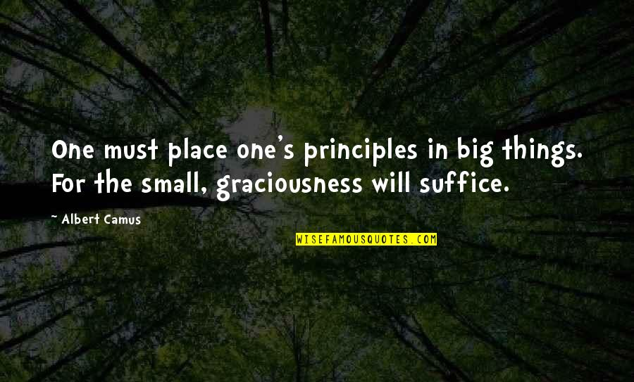 Theroommate Quotes By Albert Camus: One must place one's principles in big things.