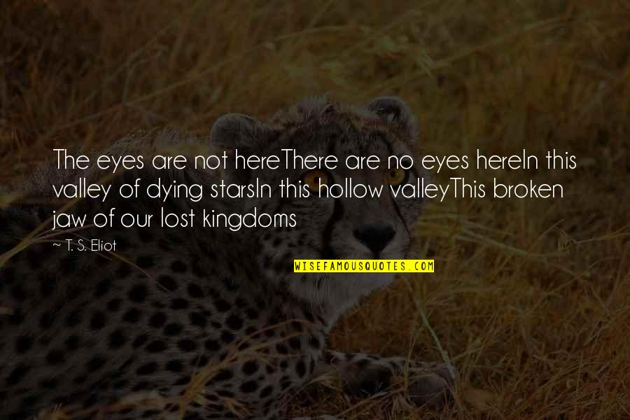 These Broken Stars Quotes By T. S. Eliot: The eyes are not hereThere are no eyes