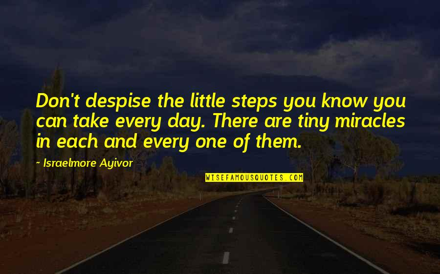 These Small Little Things Quotes By Israelmore Ayivor: Don't despise the little steps you know you