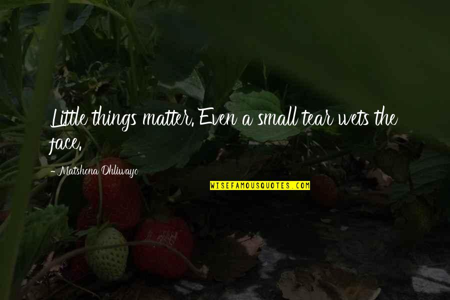 These Small Little Things Quotes By Matshona Dhliwayo: Little things matter. Even a small tear wets