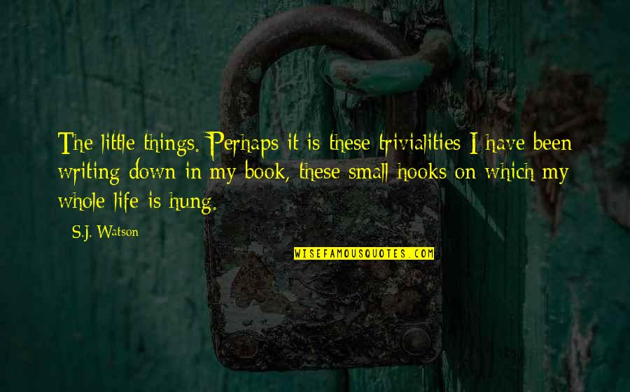 These Small Little Things Quotes By S.J. Watson: The little things. Perhaps it is these trivialities