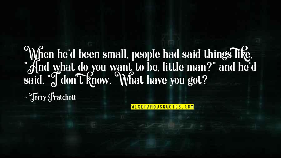 These Small Little Things Quotes By Terry Pratchett: When he'd been small, people had said things