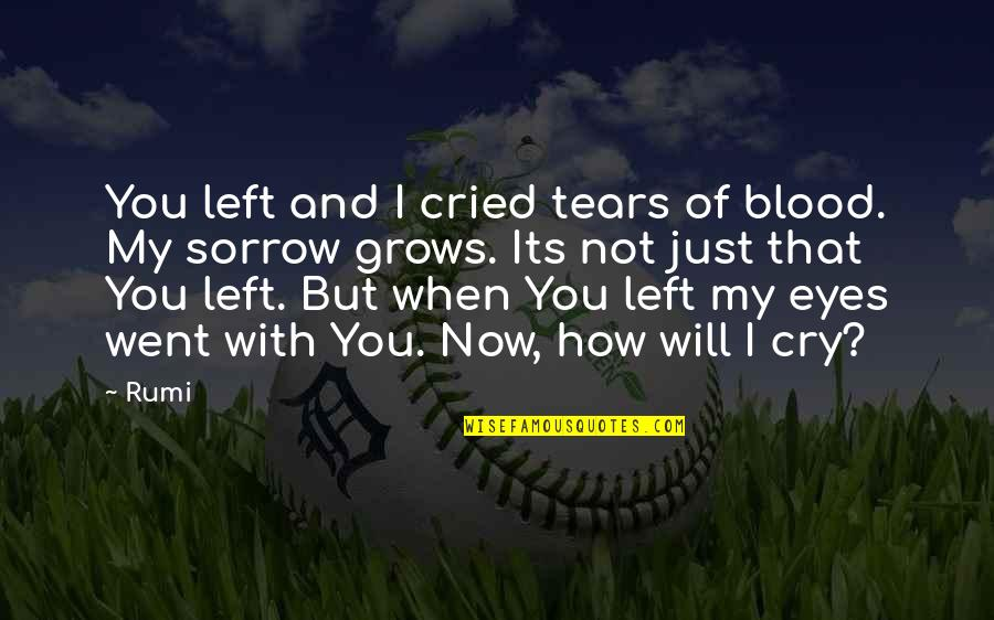 These Tears I Cry Quotes By Rumi: You left and I cried tears of blood.