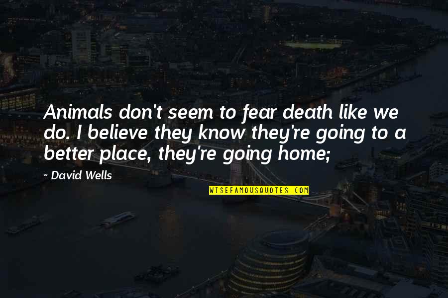 They Don't Believe Quotes By David Wells: Animals don't seem to fear death like we