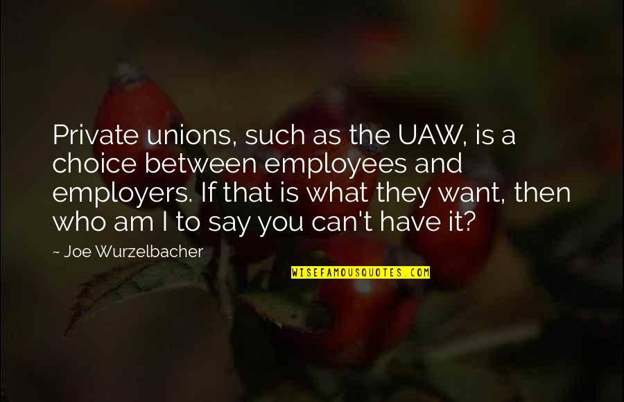 They Say I Say Quotes By Joe Wurzelbacher: Private unions, such as the UAW, is a