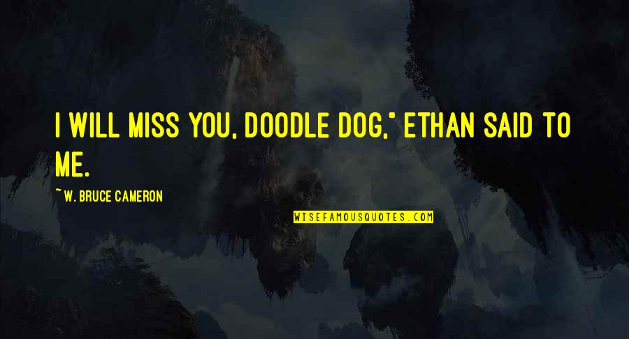 """They Will Miss Me Quotes By W. Bruce Cameron: I will miss you, doodle dog,"""" Ethan said"""