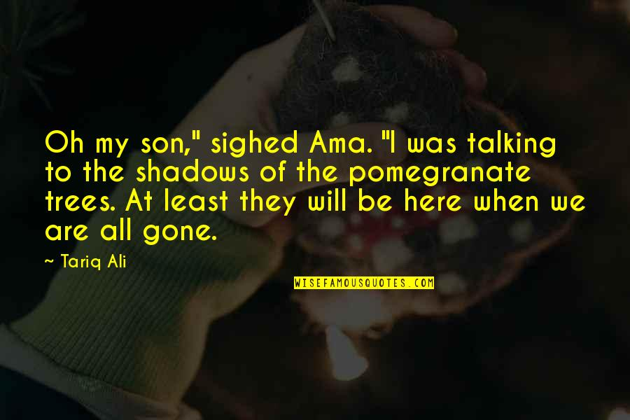 """They're All Gone Quotes By Tariq Ali: Oh my son,"""" sighed Ama. """"I was talking"""