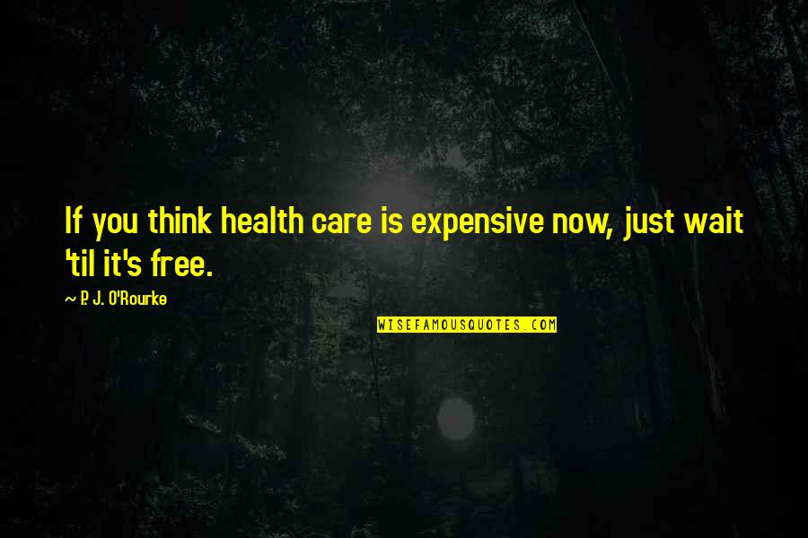 Thick And Fabulous Quotes By P. J. O'Rourke: If you think health care is expensive now,