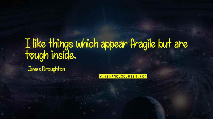 Things Are Tough Quotes By James Broughton: I like things which appear fragile but are