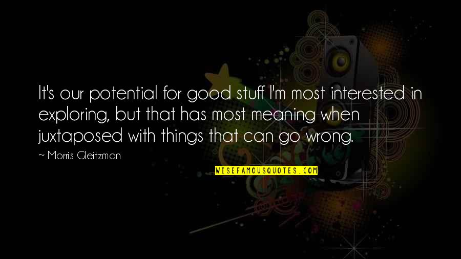 Things Go Wrong Quotes By Morris Gleitzman: It's our potential for good stuff I'm most
