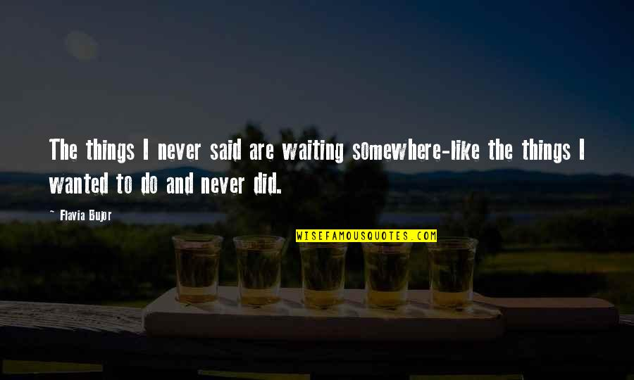 Things I Never Said Quotes By Flavia Bujor: The things I never said are waiting somewhere-like