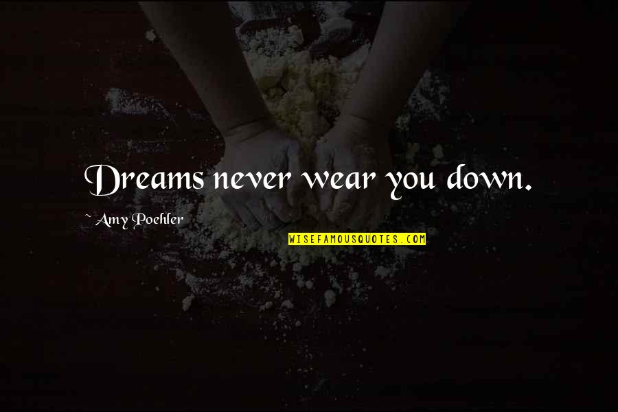 Things Never Stay The Same Quotes By Amy Poehler: Dreams never wear you down.