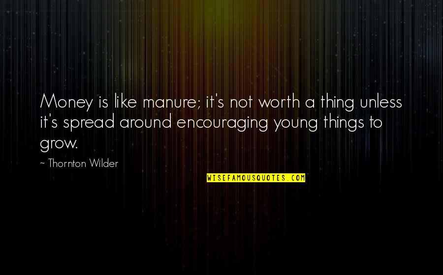 Things Not Worth It Quotes By Thornton Wilder: Money is like manure; it's not worth a