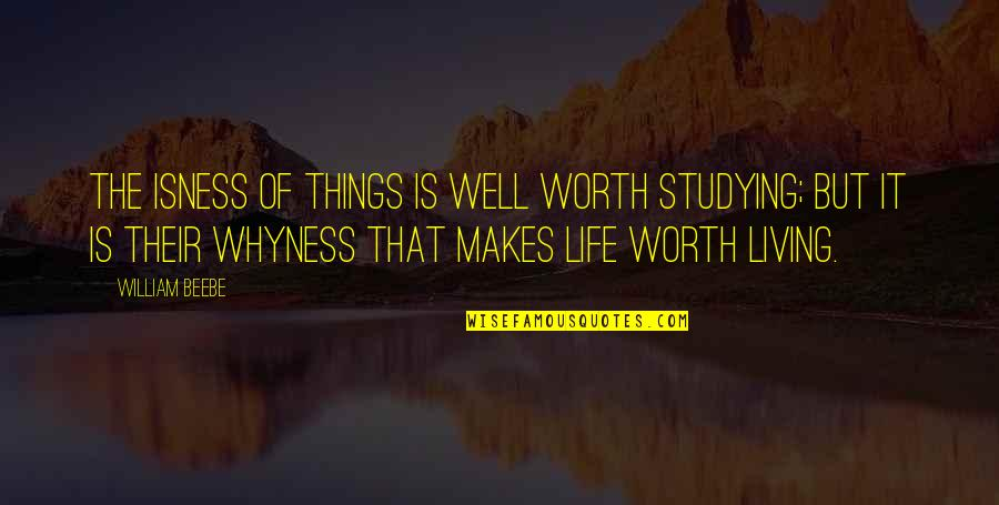 Things Not Worth It Quotes By William Beebe: The isness of things is well worth studying;
